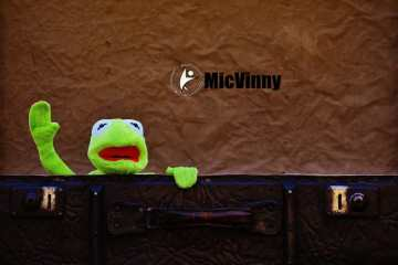 12 Portable Travel Fitness Gear You Should Always Pack, Kermit the frog coming out of a suitcase with micvinny logo from Mr. Travel Fitness