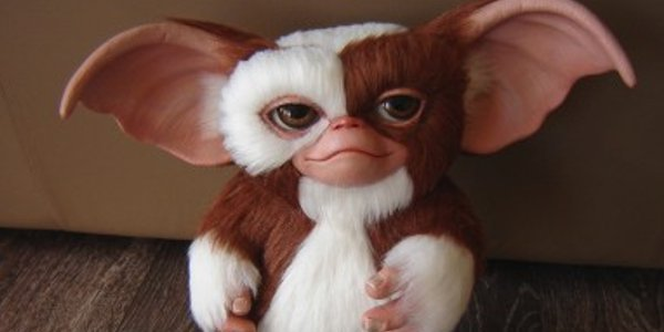 Gizmo from the movie Gremlins. Photo courtesy of Warner Bros.