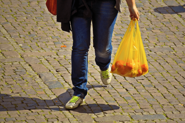 person carrying a bag of oranges