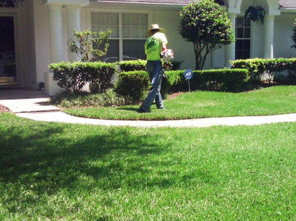 lawn care gainesville fl- mowing