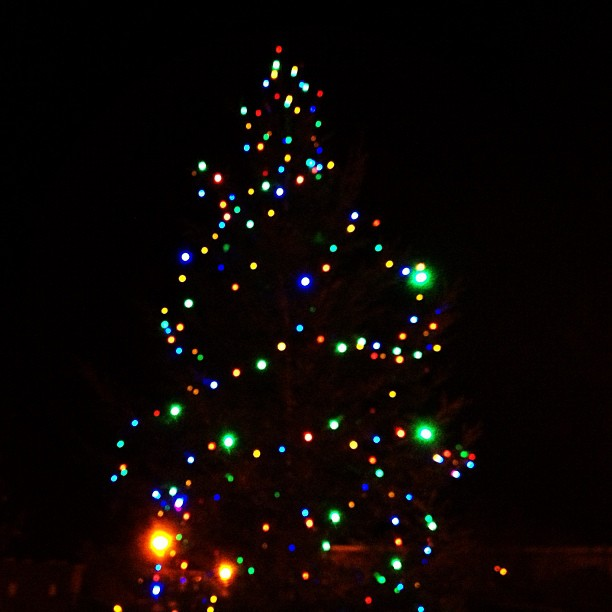 20121205 Happy Christmas Ballygowan