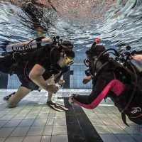 Scuba diving at Mumbai Underwater Festival