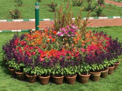 Mysore Palce garden1
