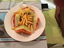 Food Villa Shanti2