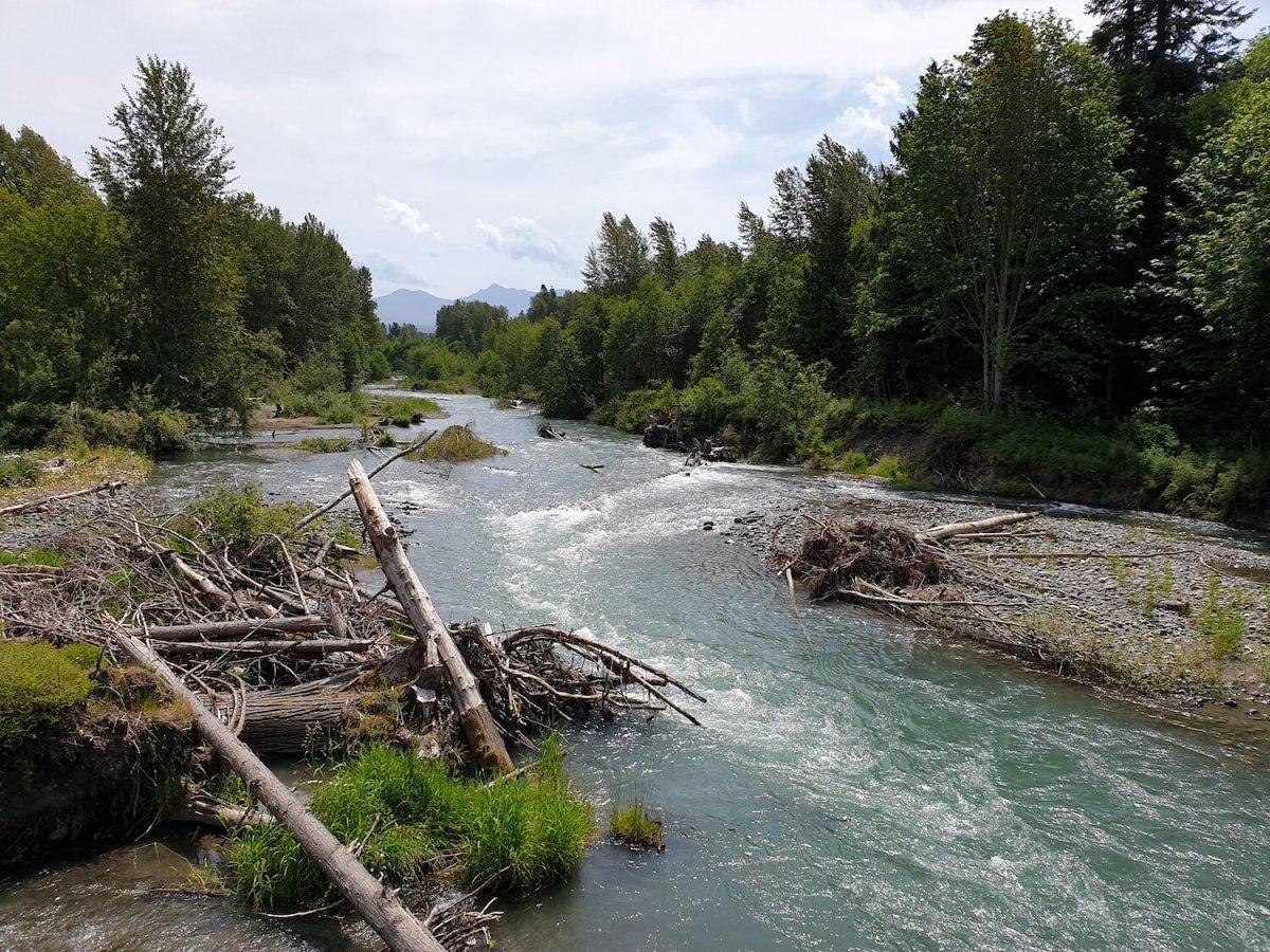 river 20190613_135658.jpg