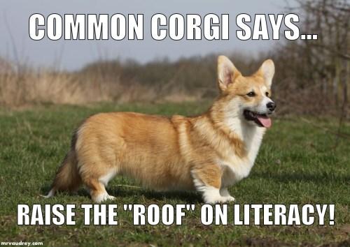 Common Corgi - literacy