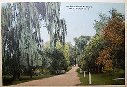Harrington Avenue - Early 1900's.