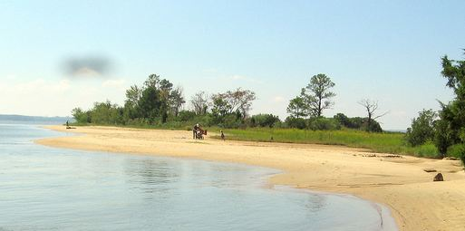 Neighborhood Spotlight: Governor's Land at Two Rivers ... |Williamsburg Beach