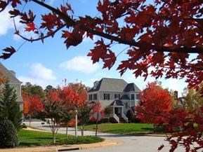 fall scene in brandon woods williamsburg va