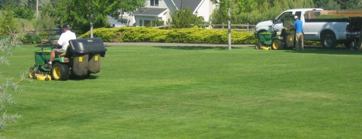 Homes With Lawn Care Included In Williamsburg And New Kent Mr Williamsburg