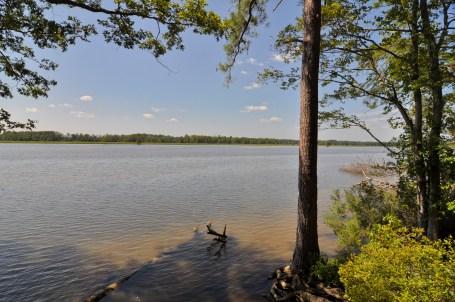 river view10