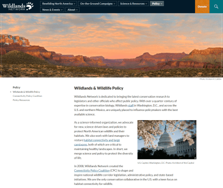 """The internal """"policy"""" page of Wildlands Network"""