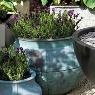 large outdoor planters the worm that