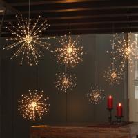 Buy Starburst LED Allium Outdoor Lights  The Worm that ...