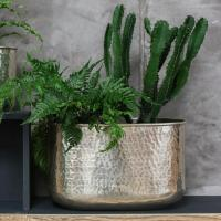 Buy Silver Hammered Finish Indoor Planters  The Worm that ...
