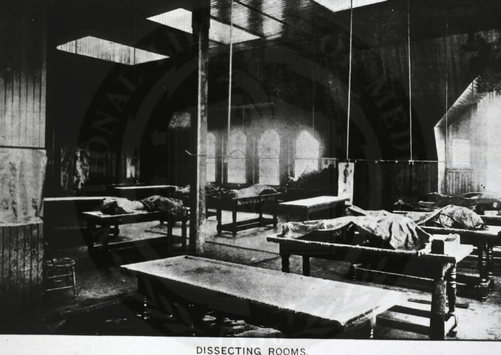 [Anatomy - History: Dissecting Rooms, College of Physicians and Surgeons, Baltimore]. Illustrated in Annual Announcement, 1893-1894. Images from the History of Medicine Collection, Order No. A016205. National Library of Medicine