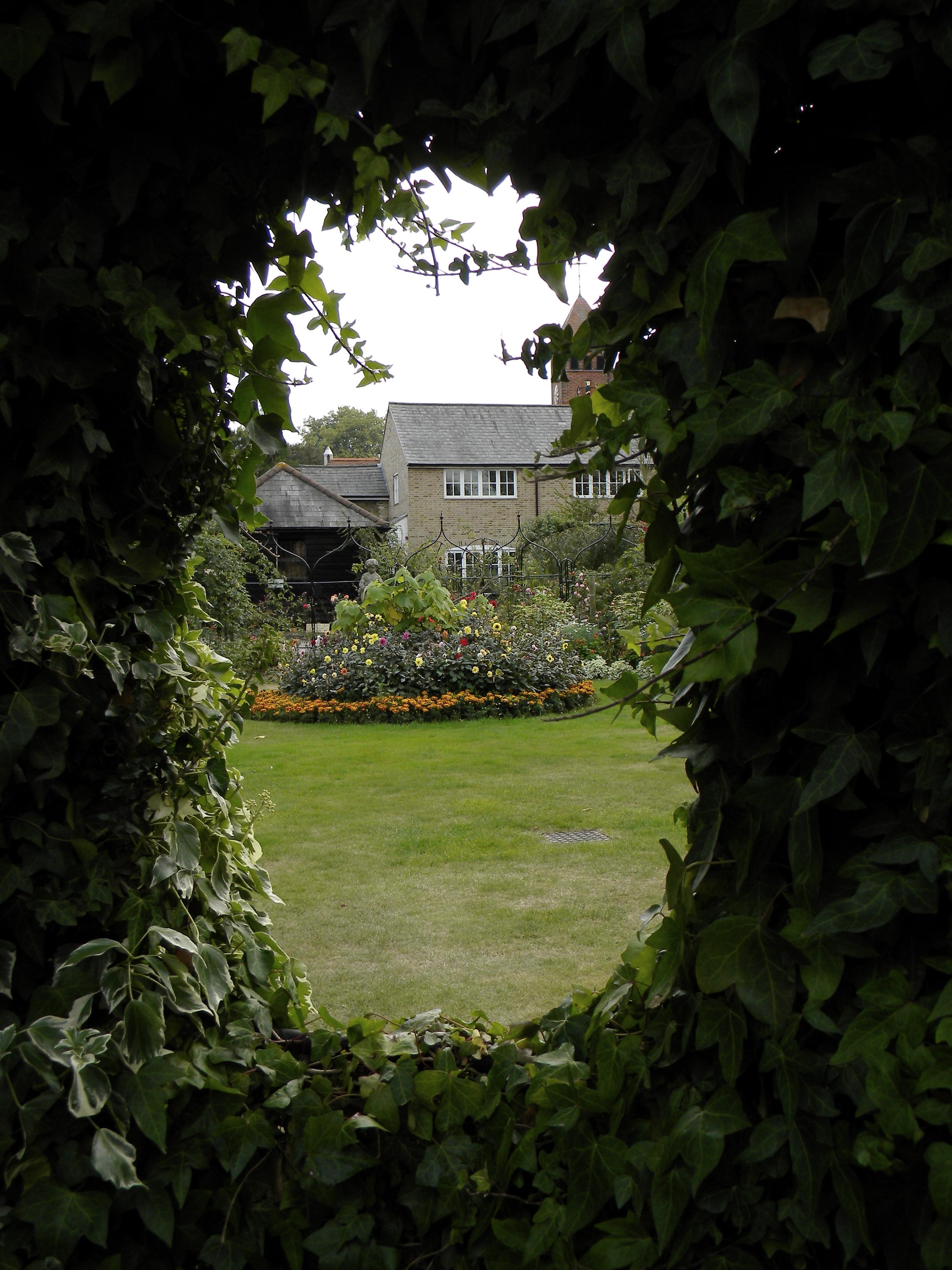Fern window overlooking Capel Manor.