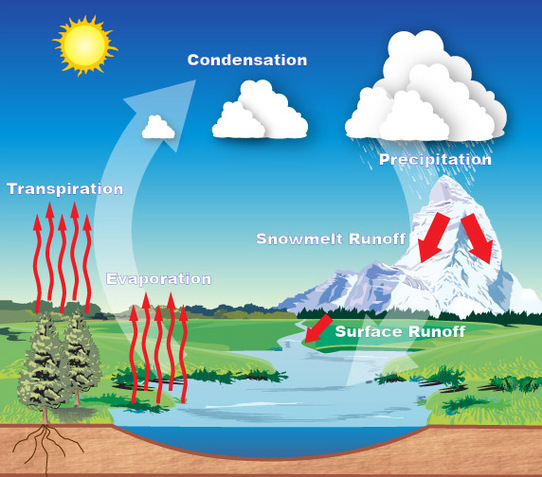 Hydrologic and Carbon Cycles  Earth Mars and Venus