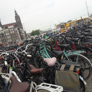 Photo of bikes lined up in Amsterdam