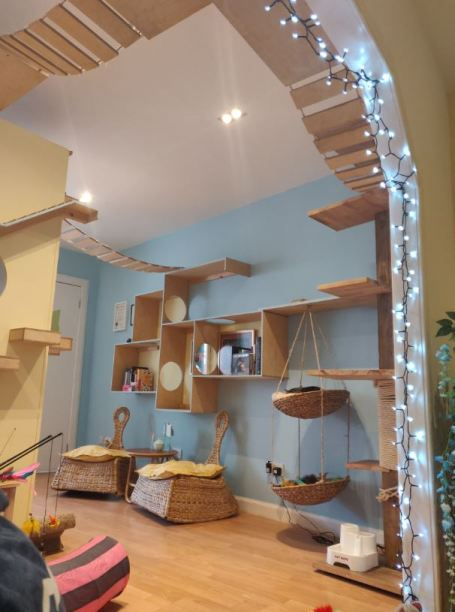 Maison De Moggy Cat Cafe