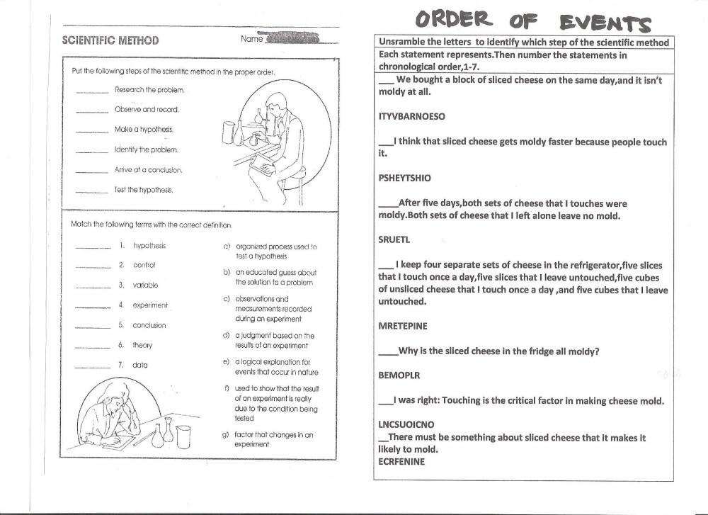 medium resolution of Science Homework Help 8th Grade - Get a Middle Grades Science Tutor Now