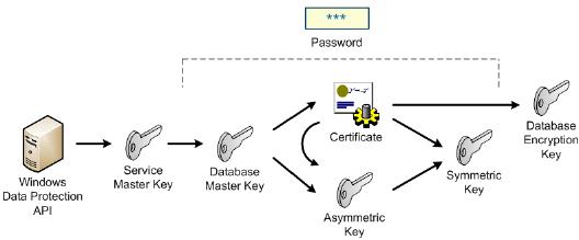 Encryption basics for SQL Server : Cryptographic Keys