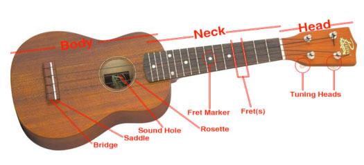 ukulele-diagram