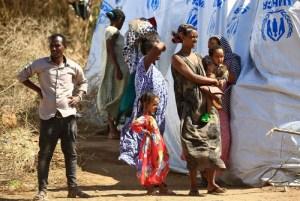 استهداف المدنيين في تيغراي تهمة تلاحق آبي أحمد