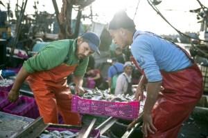 المغرب يتأهب لإطلاق أعمال تشييد ميناء الداخلة الأطلسي
