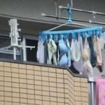 ☆☆日本特有の文化☆☆