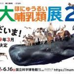 ☆☆大哺乳類展2☆☆