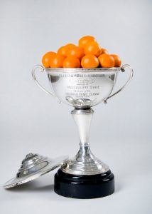 The 1941 Orange Bowl trophy.