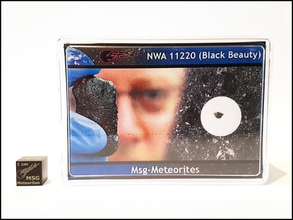 L black beauty martian meteorite nwa 112220 1