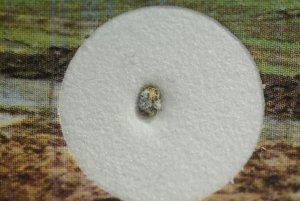 Carancas meteorite (26)