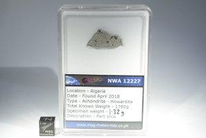 Nwa 12227 howardite (20)