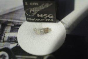 Strathmore meteorite (23)