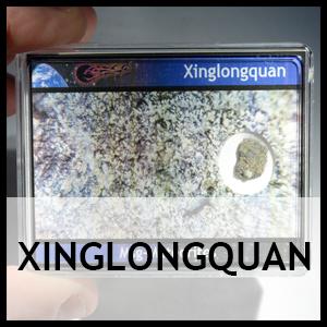 Xinglongquan