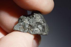 Tarda carbonaceous (56)