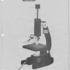 Parts Of A Compound Light Microscope Diagram 3 Wire Pressure Transducer Wiring Cells Tissues Organs And Organ Systems Ms Geddes 39 Notes