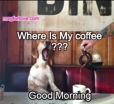 good morning funny coffee meme
