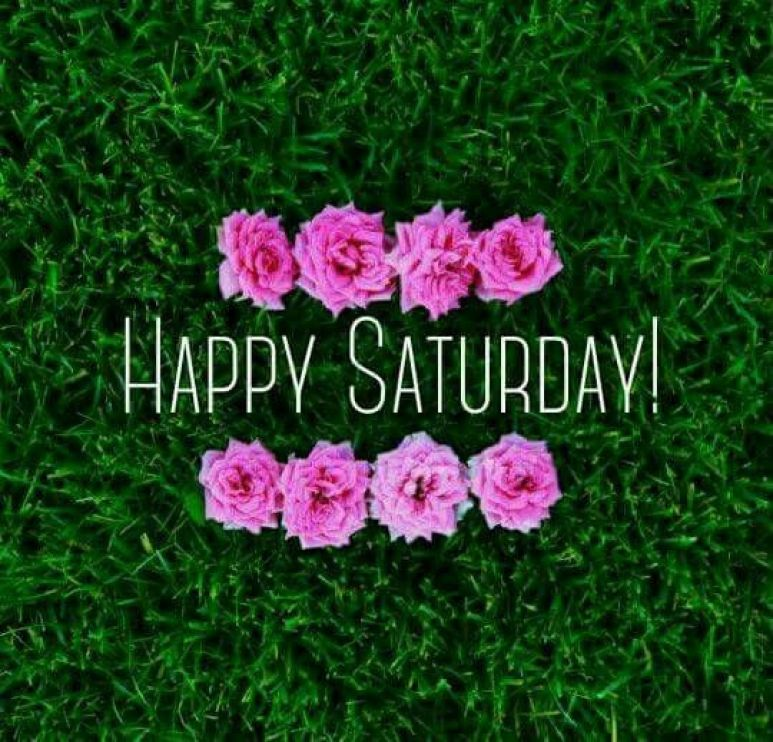 Best Good Morning Saturday Quotes