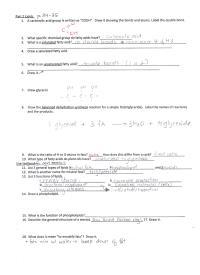 Nucleic Acid Worksheet Free Worksheets Library | Download ...
