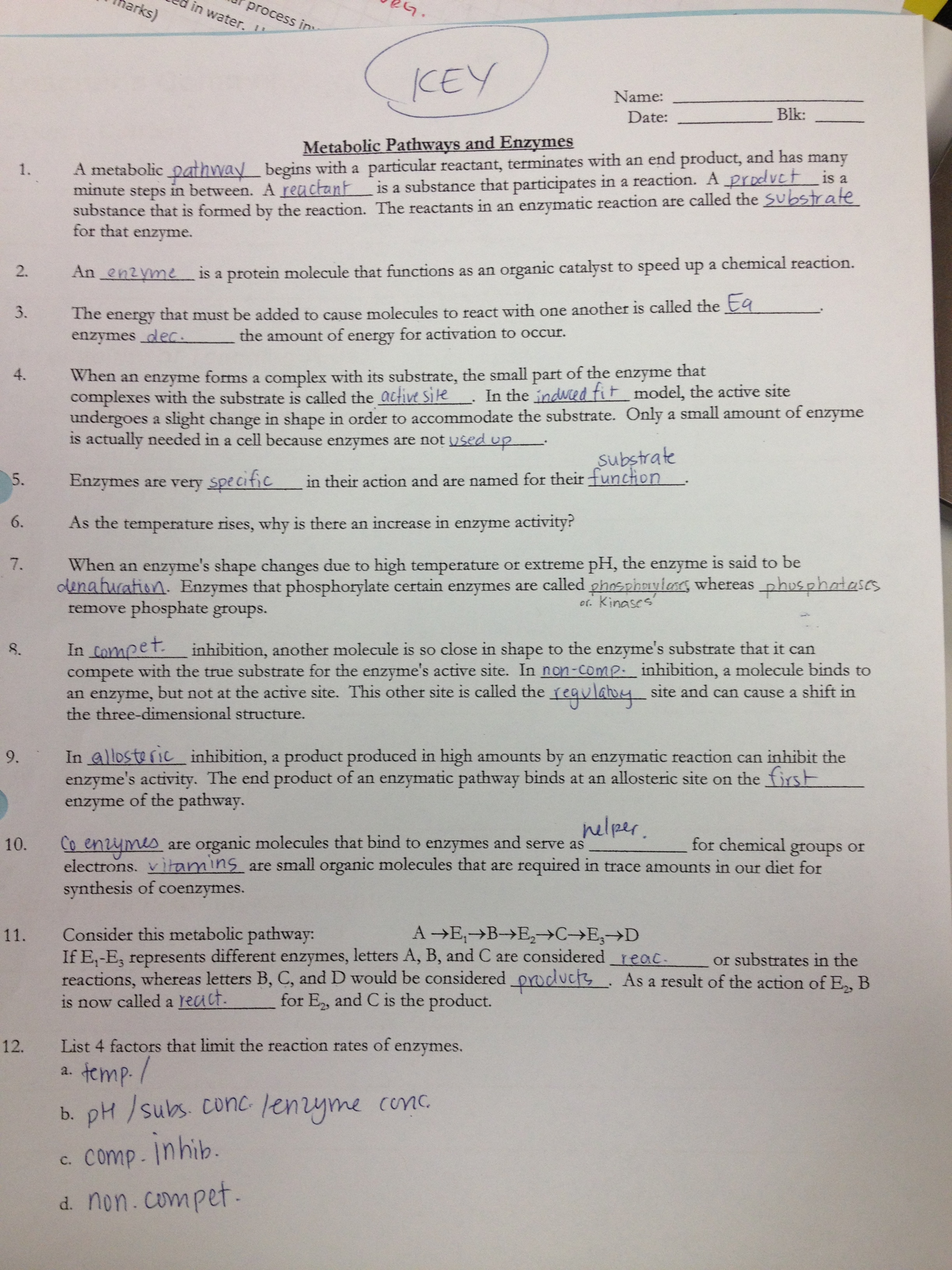 Chemistry Of Carbohydrates Worksheet Answers
