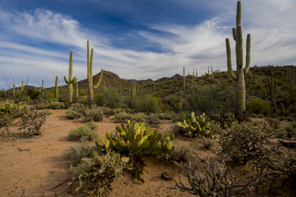 Southwestern Fine Art Photography, Mountain Spirit Gallery, Prescott