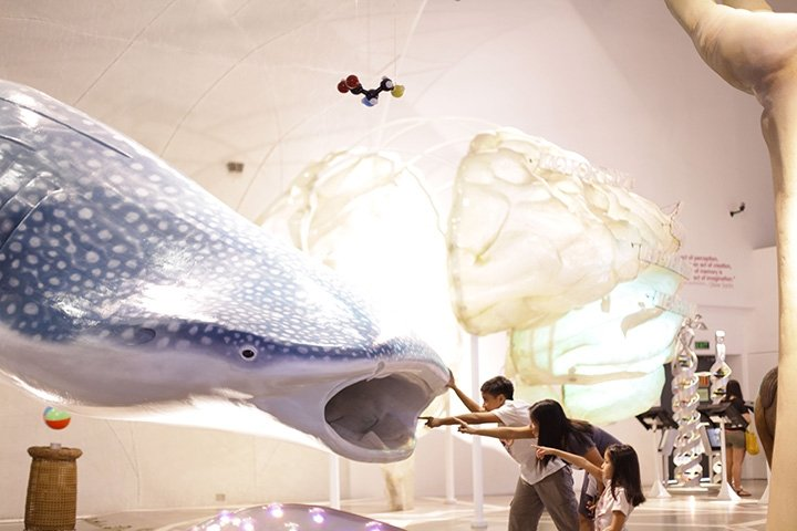 MIND MUSEUM: Explore the wonderful world of science at the Mind Museum