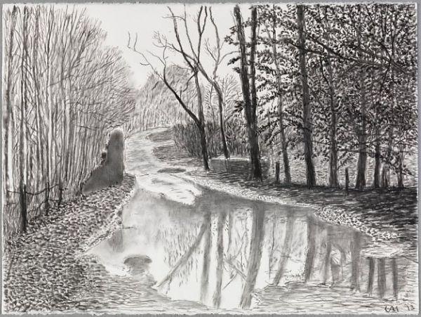Hockney-charcoal