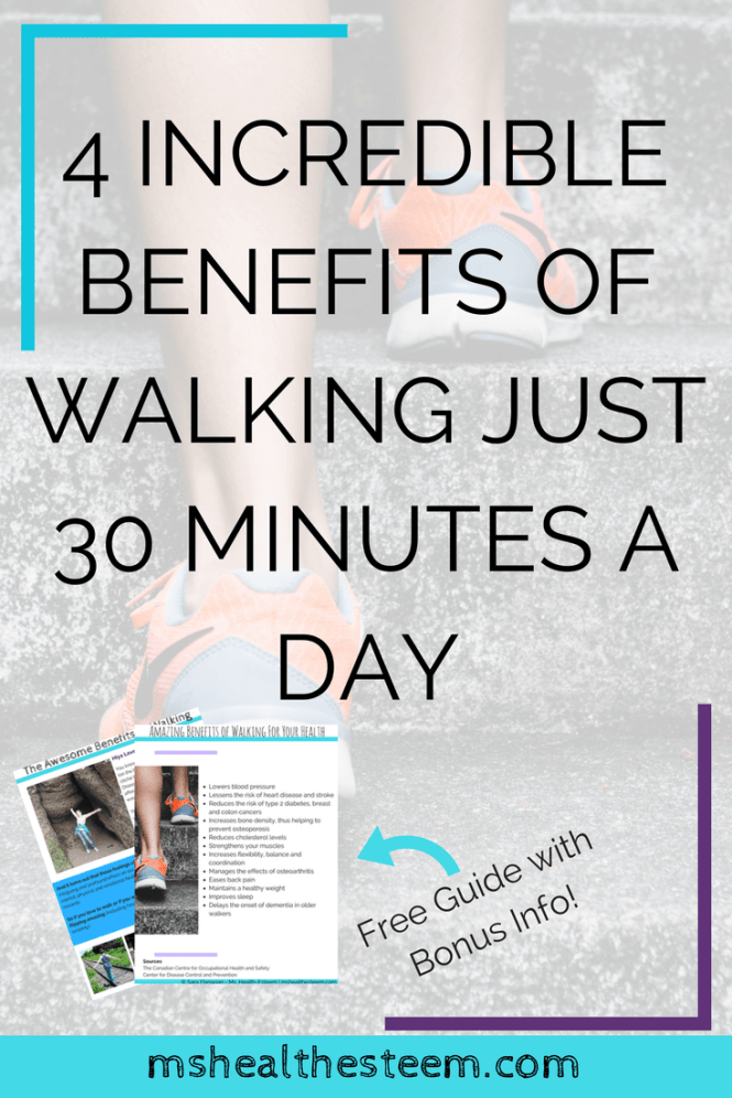 4 Incredible Benefits of Walking Just 30 Minutes a Day | How walking supports your mental, physical and emotional health, makes you more creative and even benefits your social life! Click through to see how this is far more than just a great way to exercise #exercise #healthylifestyle #mentalhealth