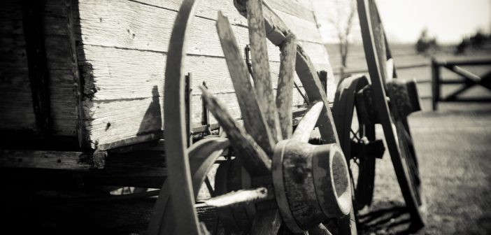 life wagon