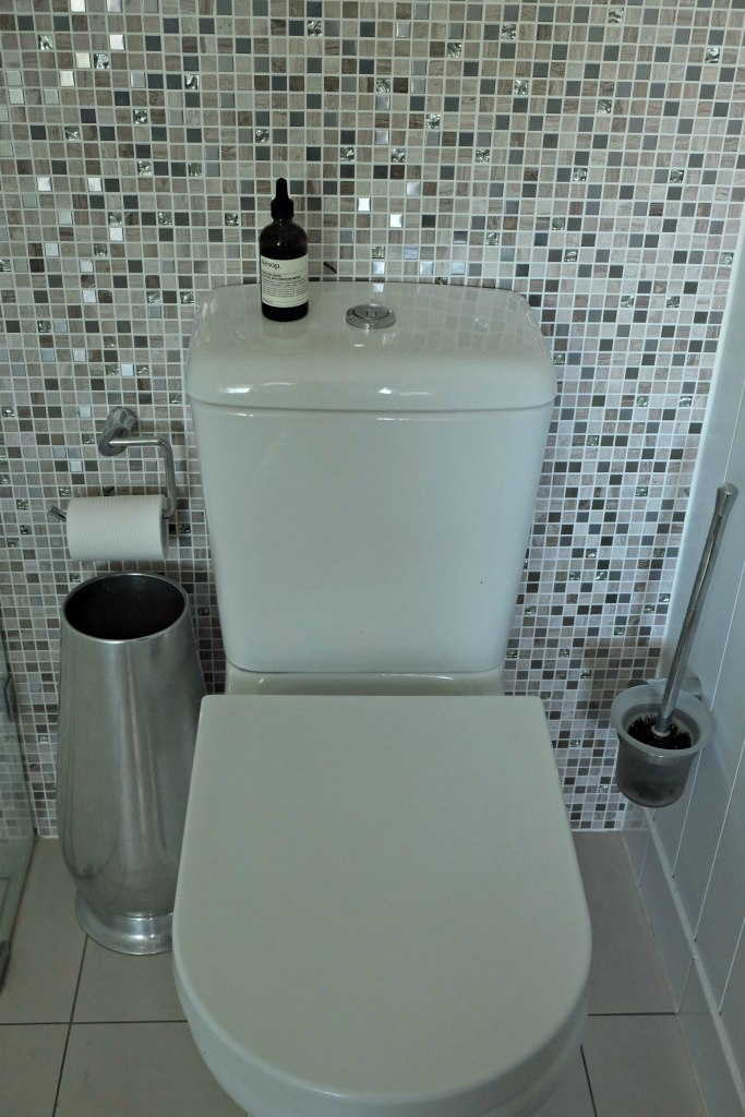 Picture of toilet with beauitufl silver tiles behind it.  The Aesop post poo drops are sitting on top of the toilet.