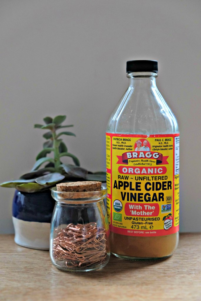 Picture of bottle of apple cider vinegar and small plant.  Three Ways To Use Bragg Organic Apple Cider Vinegar post.